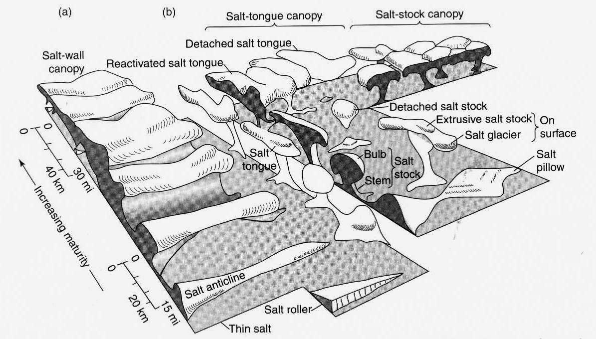 Allochthonous salt structures such as sheets (herein termed u0027tonguesu0027) and canopies (amalgamated u0027sheetsu0027) are also common. (from Jackson and Talbot ...  sc 1 st  seis_matters - WordPress.com & X-Raying Salt Diapirs u2013 seis_matters